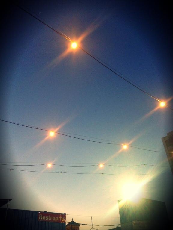 photo 5 (6)